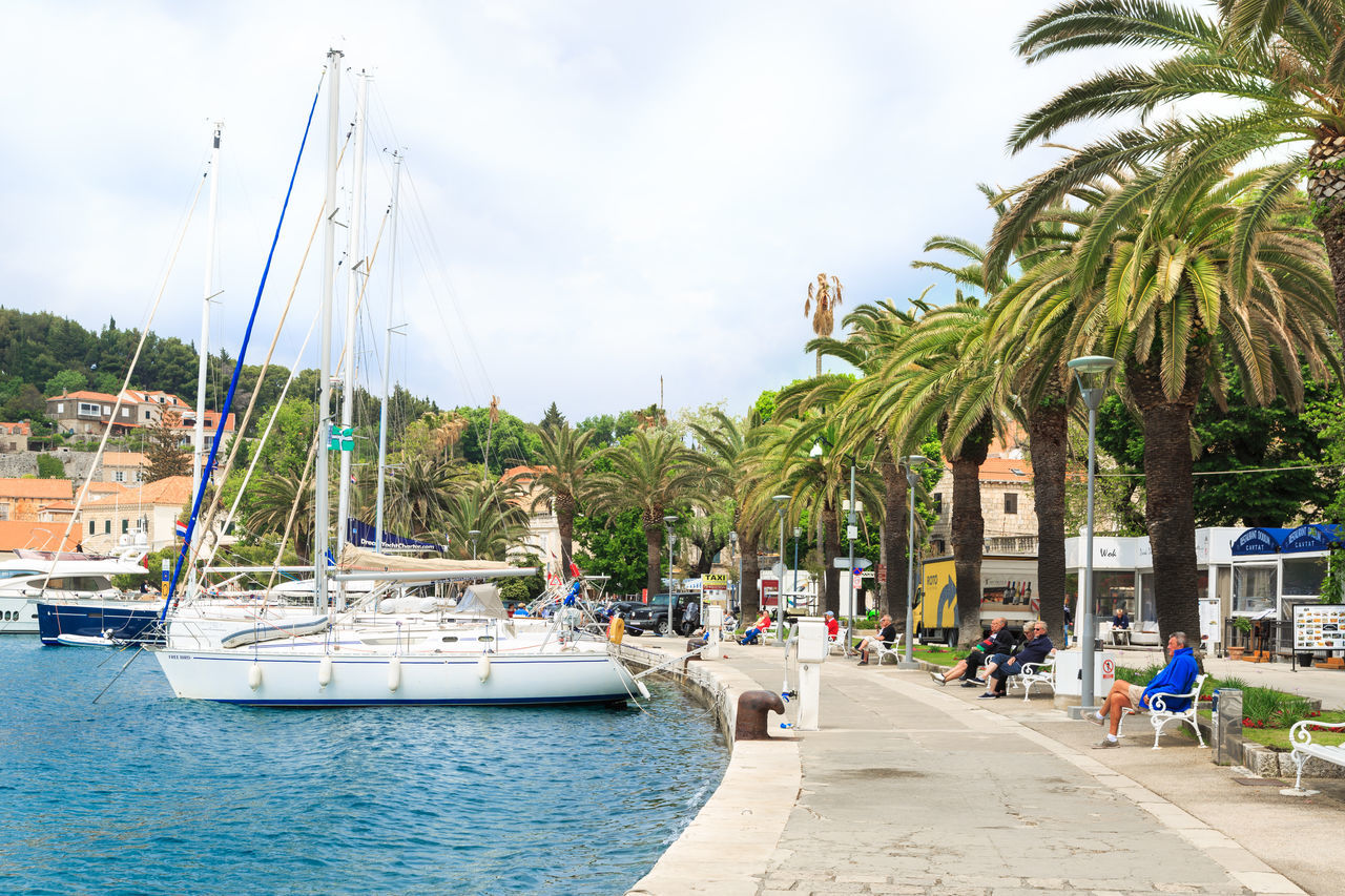 Yachts docked in Cavtat, Croatia Adult Cavtat  Croatia Destination Harbor Holiday Hot Luxury Marina Nature Nature Outdoors Palm Tree Palms Sailing Yacht Sky Summer Summertime Travel Travel Destinations Vacation Warm Water Yacht Destination Yachts