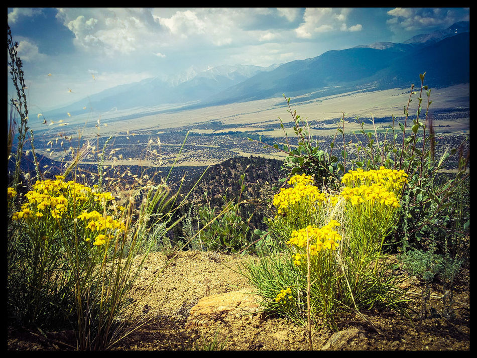 Mountain valley view Theview Mountains Mountain View Scenic Valley Valleys Valley View Valleybelow Yellow Flower Scenics Scenery Scenery Shots Scenic Landscapes Scenic View Scenic Photograghy Scenery_collection Scenic Lookout Beautiful Beautiful Day Beautiful Nature Flowers