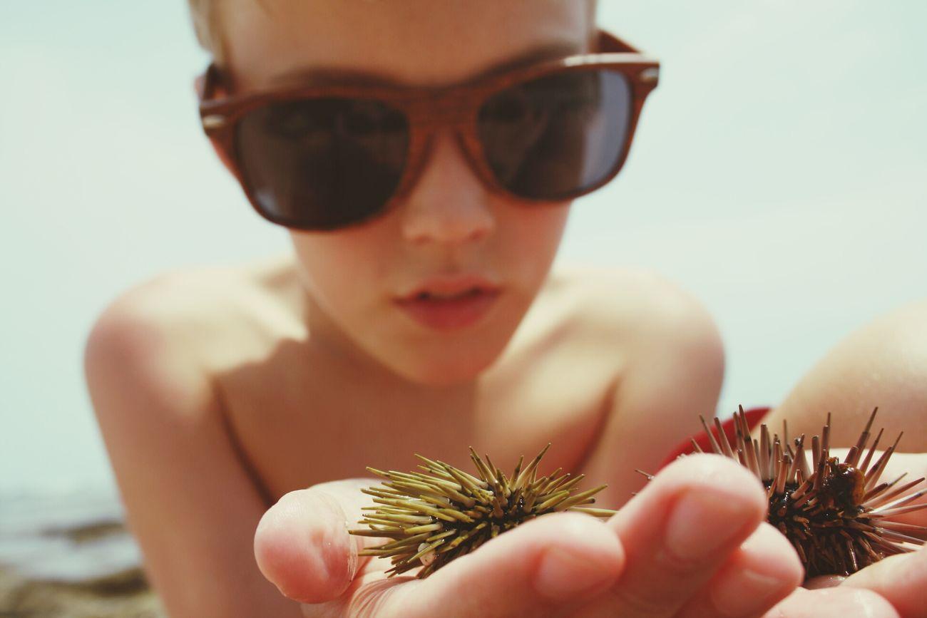 Little sea creatures The Portraitist - 2014 EyeEm Awards Sunglasses Hawaii Seaurchin