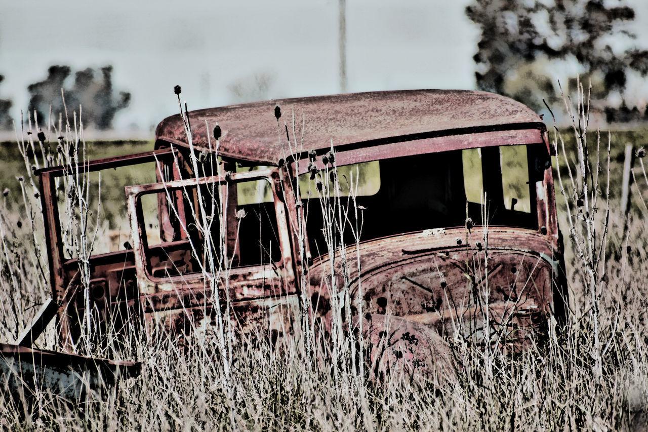 Automobile Autosantiguos Broken Car Cars Collectioncar Damaged Deterioration Fiat Fiat600 Macchina No People Obsolete Old Oldcar Vehiculo  EyeEmBestPics EyeEm Gallery EyeEm Best Shots