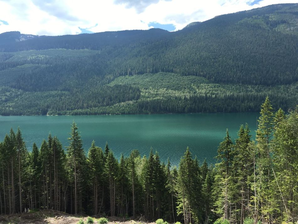 No Filter Lake Forest From Above  Scenery Nature Green Deep Green Water Looking Down Camping Hiking In The Wild Canada Beautiful British Columbia Beautiful Nature Breathtaking