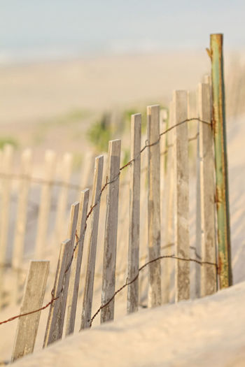 Beach Fences Beach Beach Fence Beach Life Close-up Day Fence No People Ocean Outdoors Picket Fence Picket Fence Saltwater Sand Sandy Sky Wood - Material