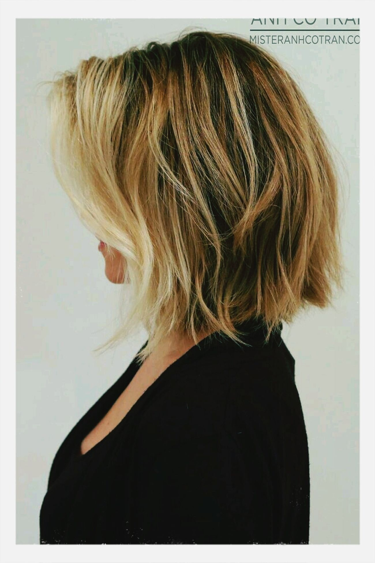 Hair Ideal Soon Shorthair