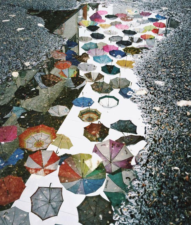 Umbrella Puddle Reflection