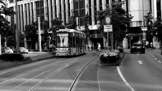 Blackandwhite City City Life City Street Day Mode Of Transport Monochrome Road Road Marking Street The Street Photographer - 2016 EyeEm Awards Traffic Transportation