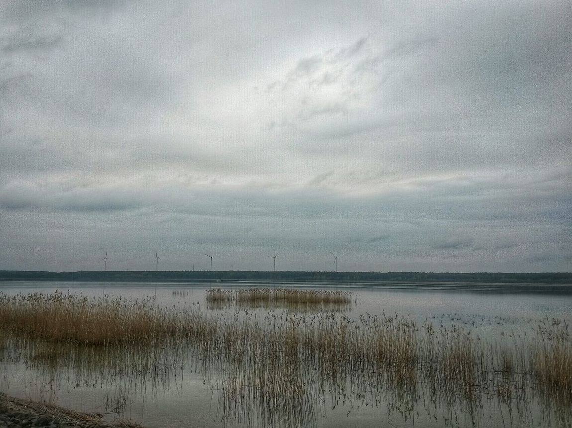 Showcase April Sky And Clouds Water Reeds At The Lake Landscape Without People Silent Landscape AndroidPhotography Snapseed Editing  Lausitz Spreetal Bernsteinsee