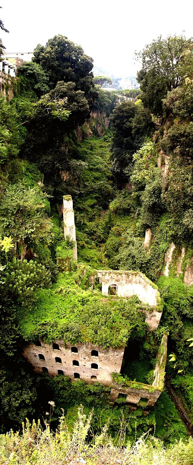 nature gets what belongs to her. South italy, near Sorrento... Nature Ruins Italy Architecture Colors Of Nature Green Green Color Green Green Green!
