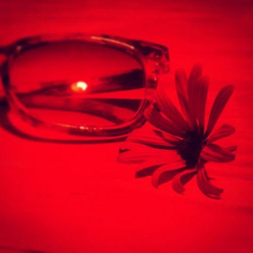 Redlight NightDiem