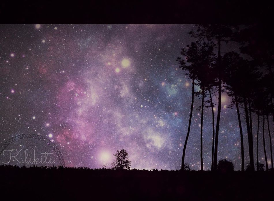 Sky Tree Star - Space Night Astronomy No People Scenics Galaxy Beauty In Nature Outdoors Milky Way Nature Space Space Exploration France Photoshop Night Shot France Photos Les Landes Aquitaine Friends Nightphotography
