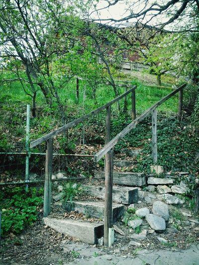 Swiss Stairs