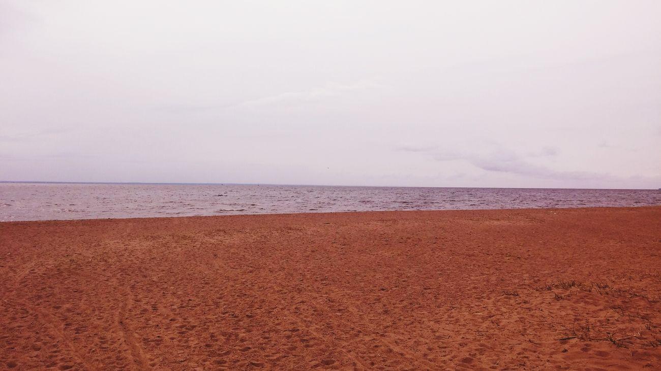 Gulf Of Finland Spring Beach Baltic Sea Balticsea Baltic Sea Baltic