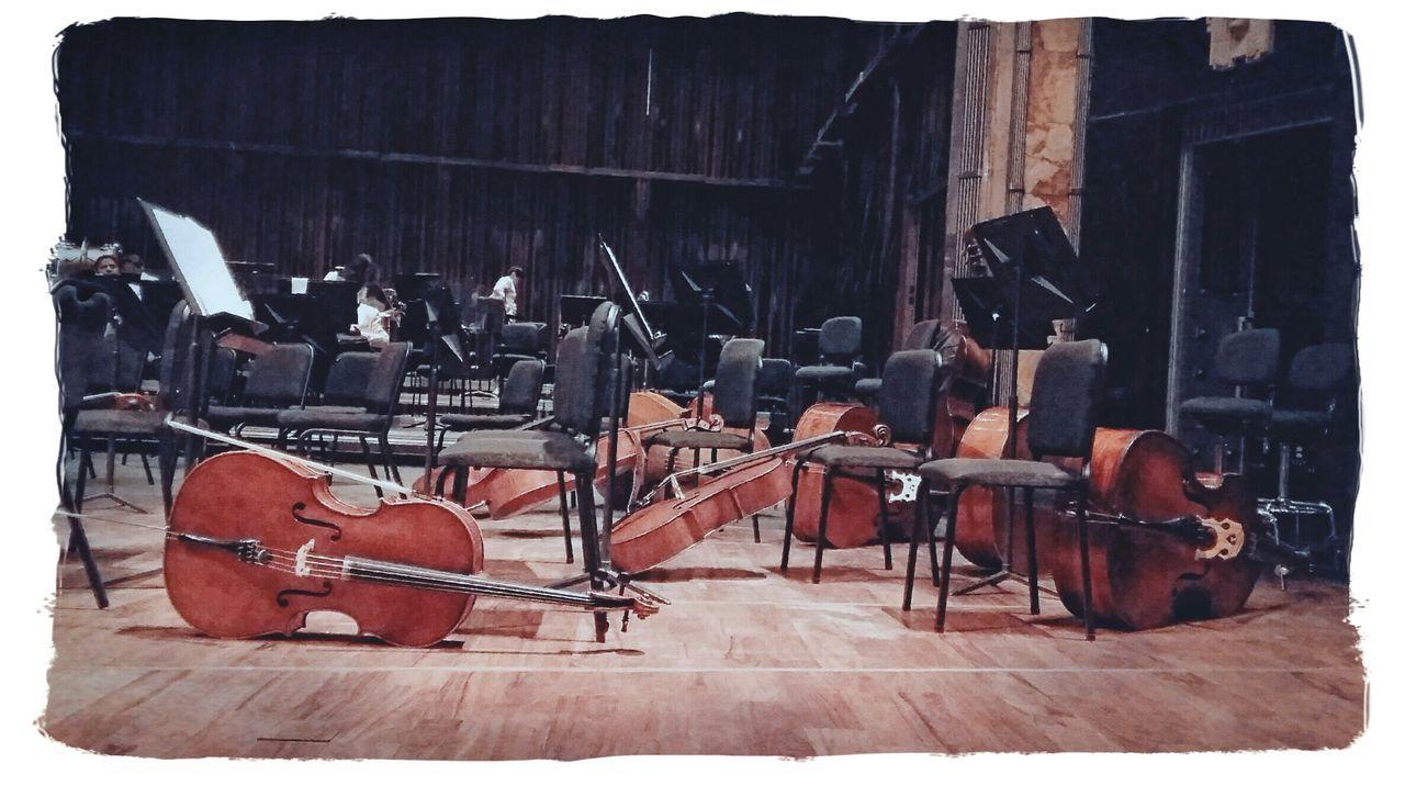 Music Instruments Instrument De Musique Instrumentos Cuerdas Cuerdas En Reposo Palacio De Bellas Artes