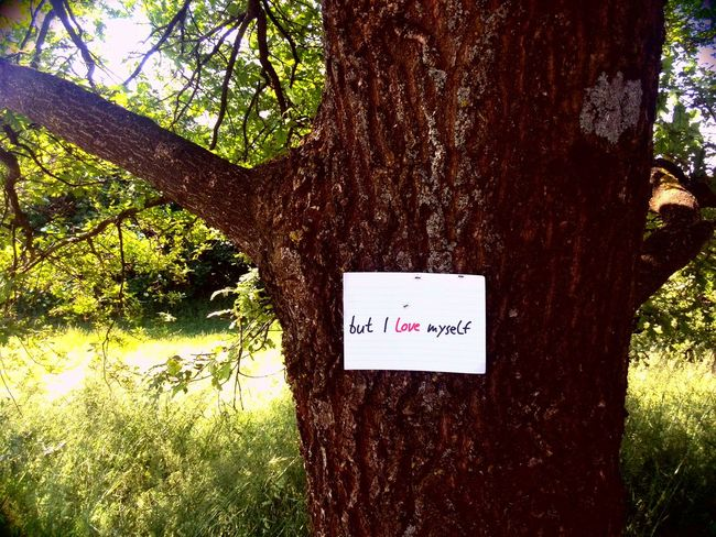 Signs Hugging A Tree Enjoying The Sun Streetart Relaxing Urban Nature Nature Sunshine Quality Time Lo