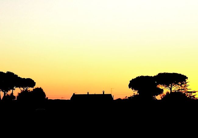 Sunset_collection Sunset Silhouettes Silhouette_collection Tuscany Countryside
