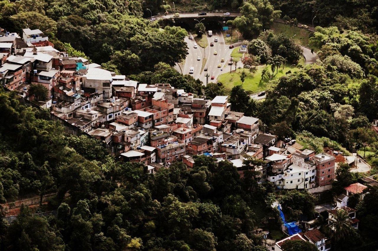Rio De Janeiro Urban Nature