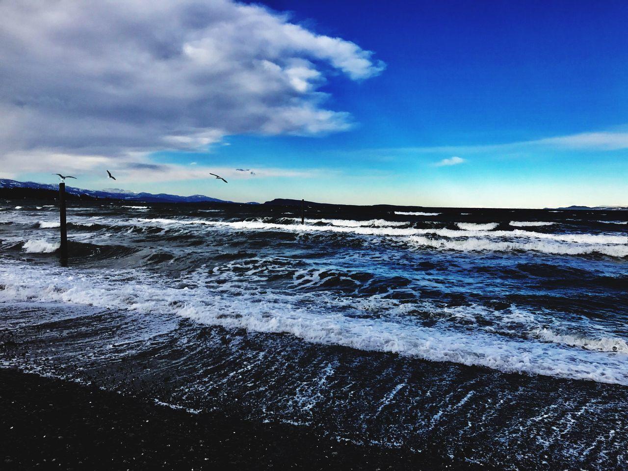 EyeEmNewHere Oceanside Sky Nature Beauty In Nature Horizon Over Water Wave Beach Tranquil Scene Cloud - Sky Sea Qualicum Beach Islandlife Vancouver Island Beautifulbc Zen Powerful Power In Nature Seabirds Stormyseas Beach Life