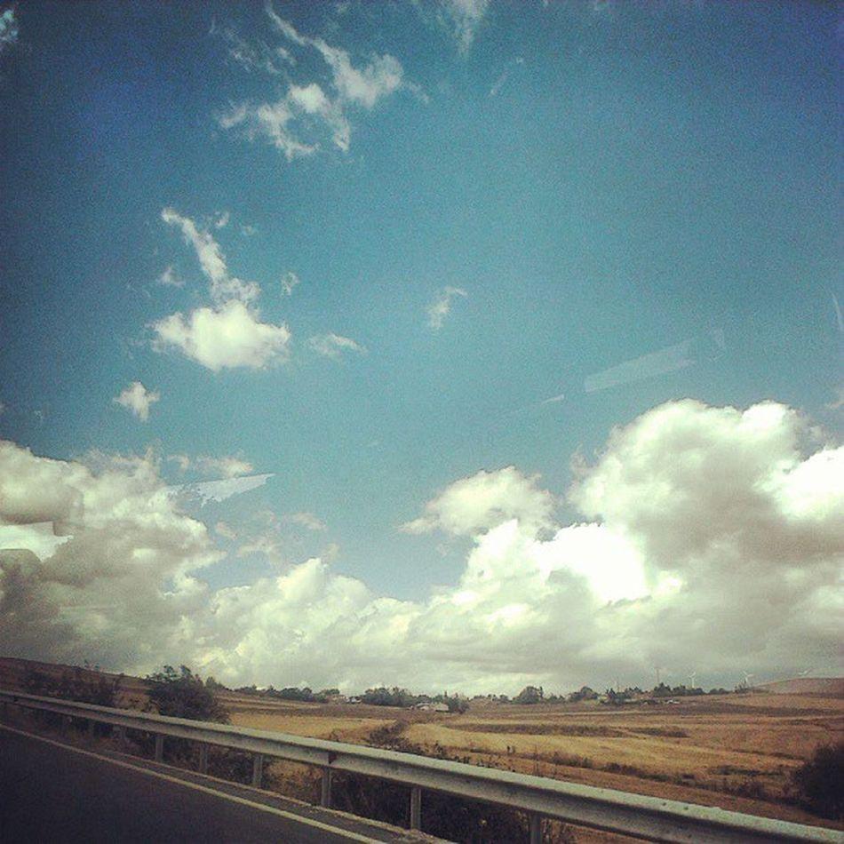 Tarkovski'nin sevdiği havalardı bunlar, Cloudy Roads Stayla
