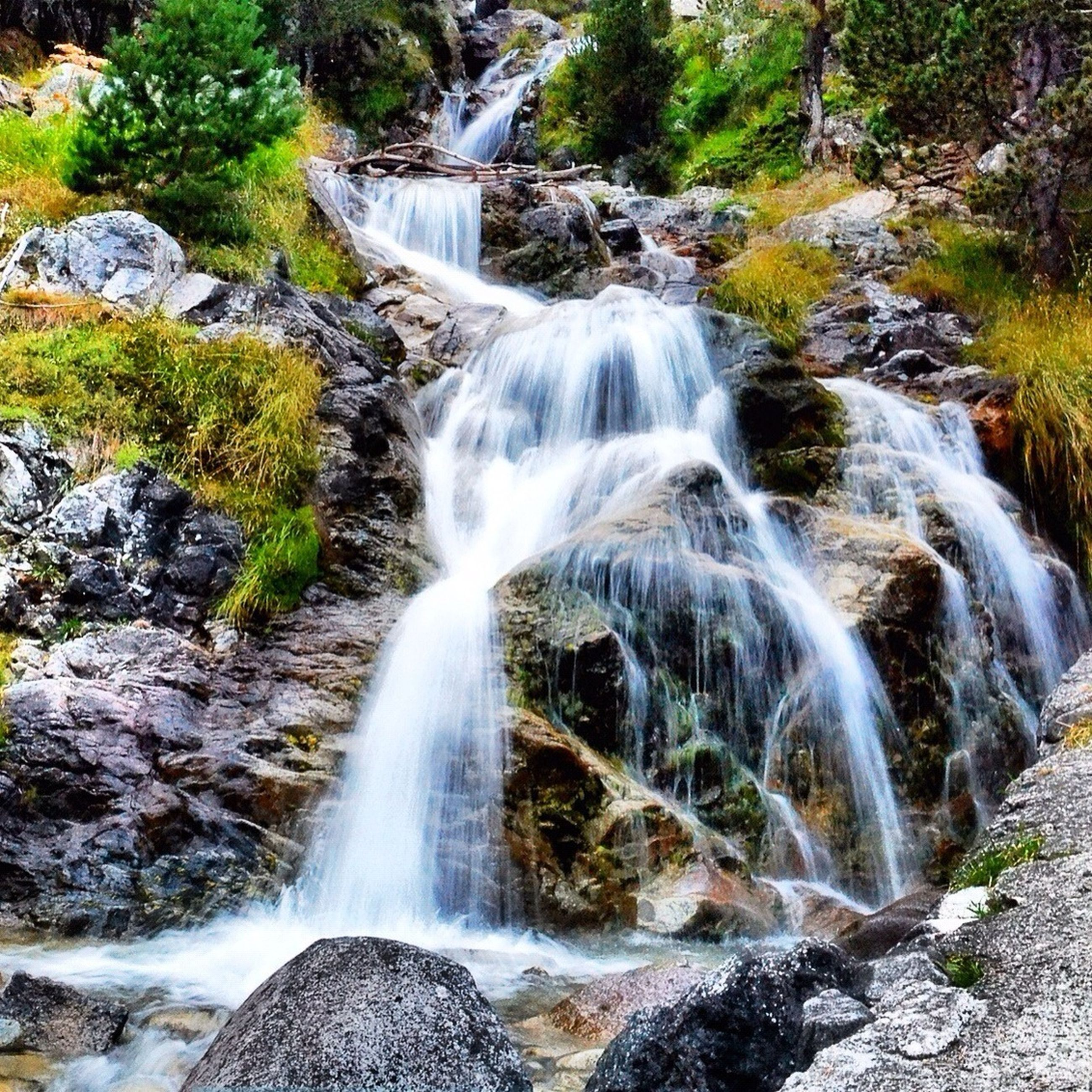 waterfall, water, flowing water, motion, rock - object, flowing, long exposure, beauty in nature, forest, nature, stream, scenics, rock, rock formation, river, plant, day, blurred motion, tree, outdoors