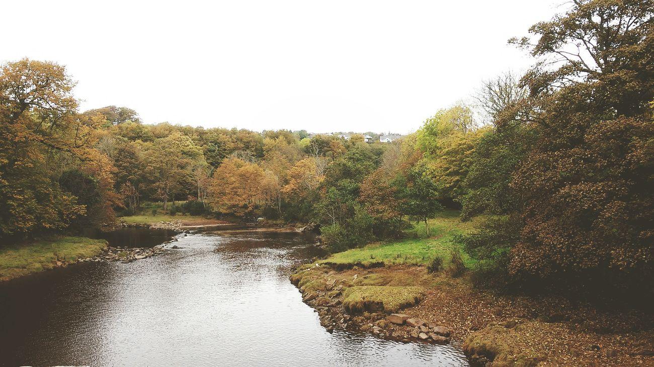 Northern Ireland Derry Derrylondonderry Swan Park Loveit