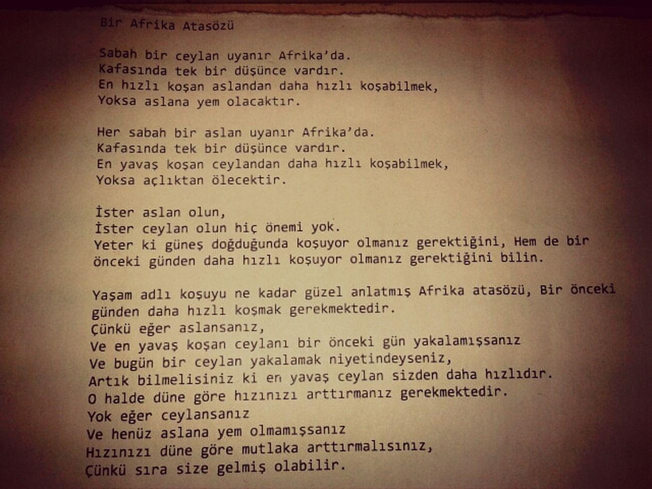 Azim Hirs Ozveri Amac