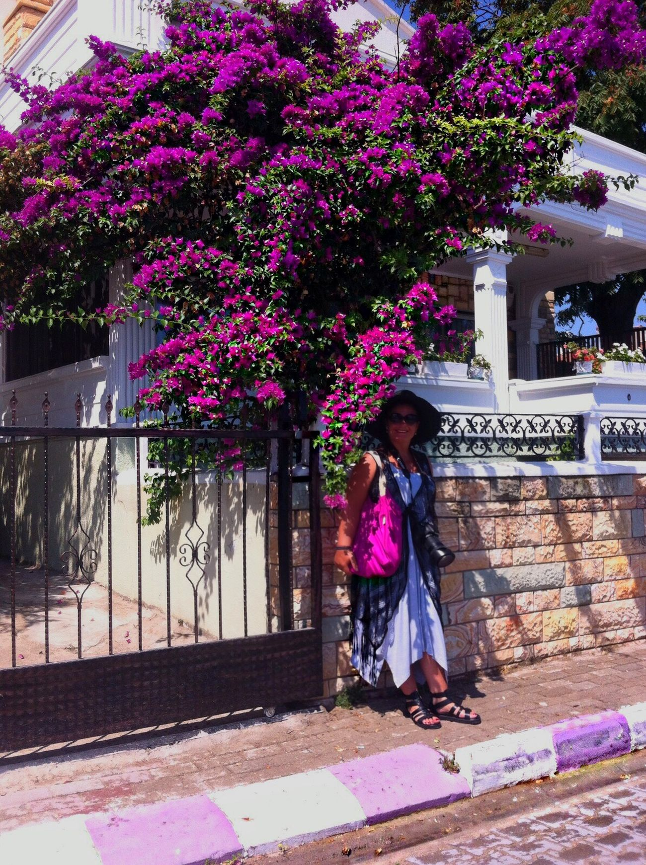 Izmir EyeEm Best Shots Pink Flower MyPhotography EyeEm Gallery EyeEm Summer ☀ Relaxing Flowers Summer2015