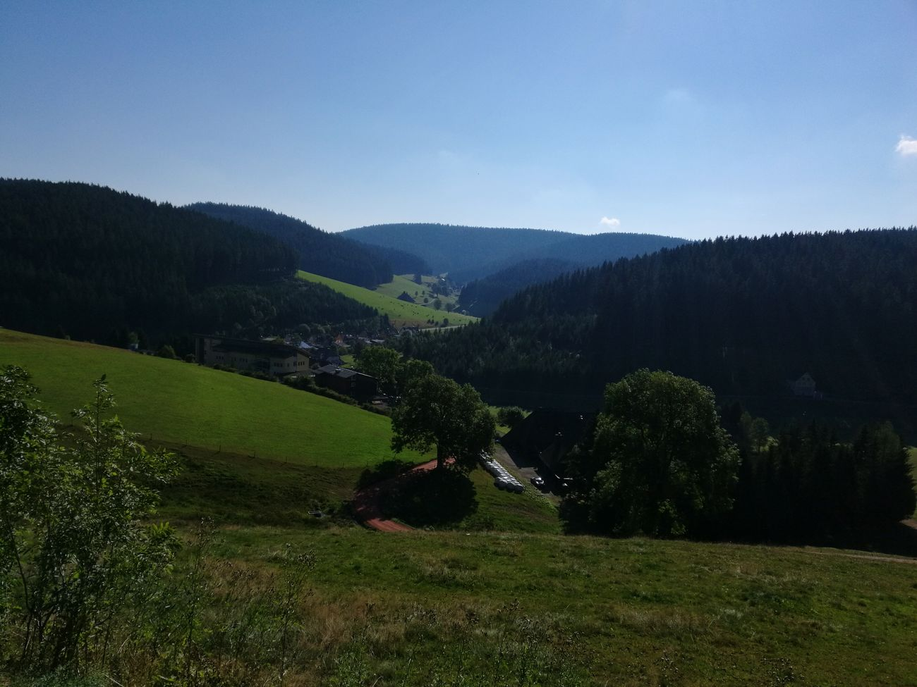 Schwarzwald Wald Tal Sonnig Landscape Beauty In Nature Mountain Nature Grass First Eyeem Photo