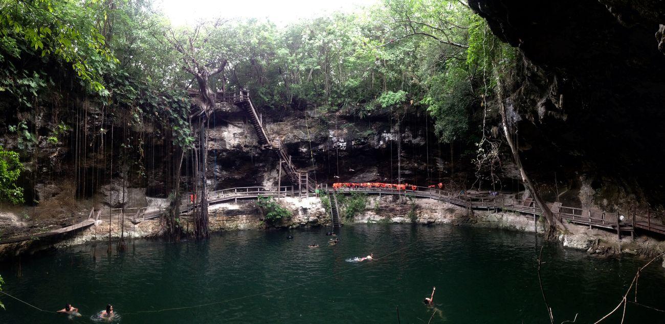 Cenote Maya X'canché Yúcatan Eyem Nature Lovers  Beautiful Nature