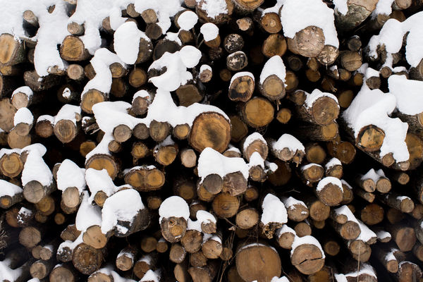 Wood Abundance Beautifully Organized Deforestation Forestry Industry Full Frame Heap Large Group Of Objects Log Lumber Industry No People Norway Norway🇳🇴 Season  Shape Snow Stack Timber Winter Season Woodpile