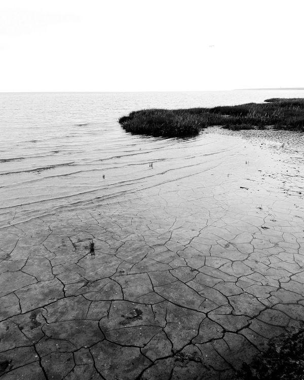 Nordsee Sandandsea Water Nature Sea Outdoors Tranquility Beauty In Nature Landscape Naturschutzgebiet Fantastic Landscape InLoveWithNature Impressive Locations Travel Destinations Miles Away