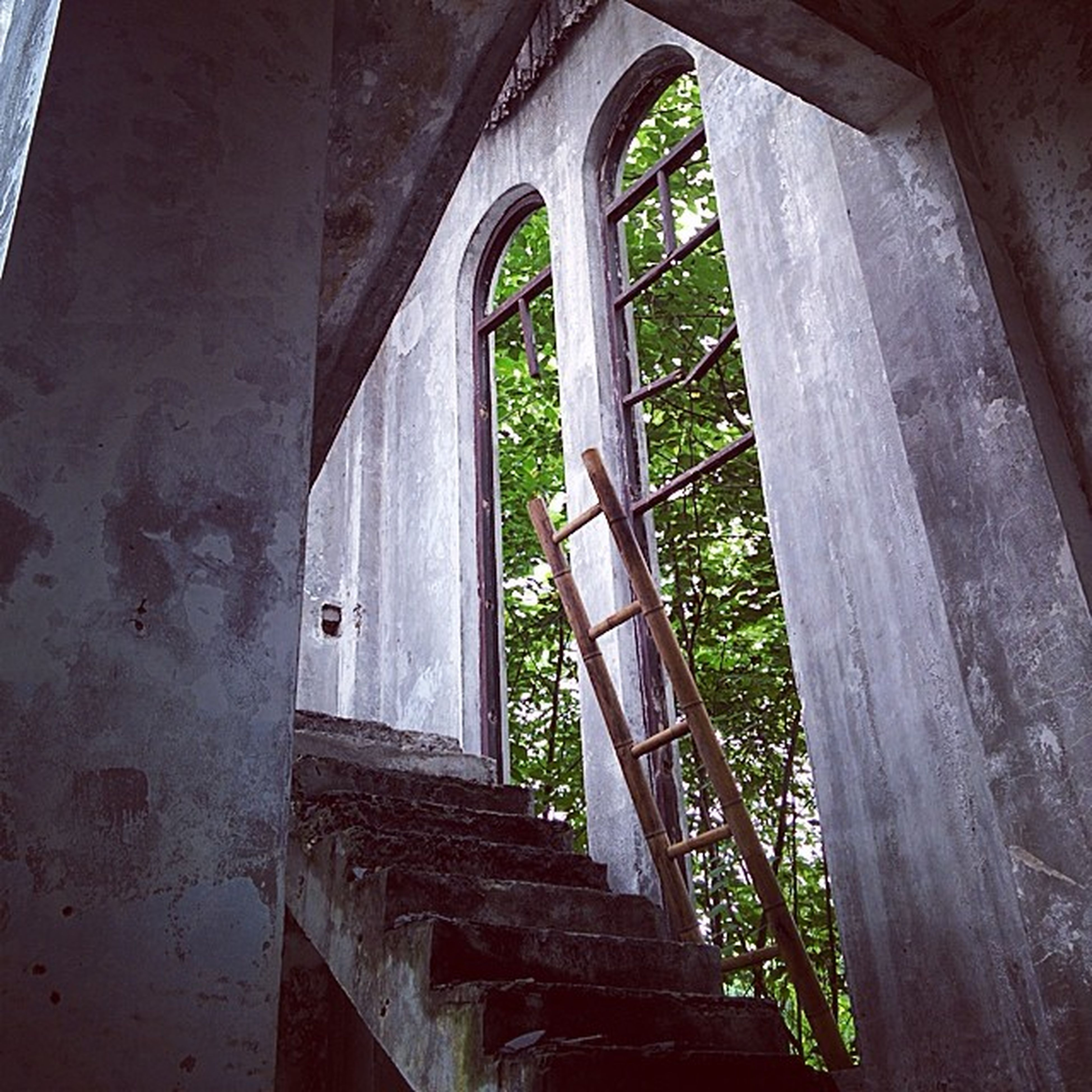 architecture, built structure, indoors, arch, window, old, abandoned, railing, day, architectural column, no people, sunlight, steps, building, wall - building feature, low angle view, building exterior, staircase, damaged, tree