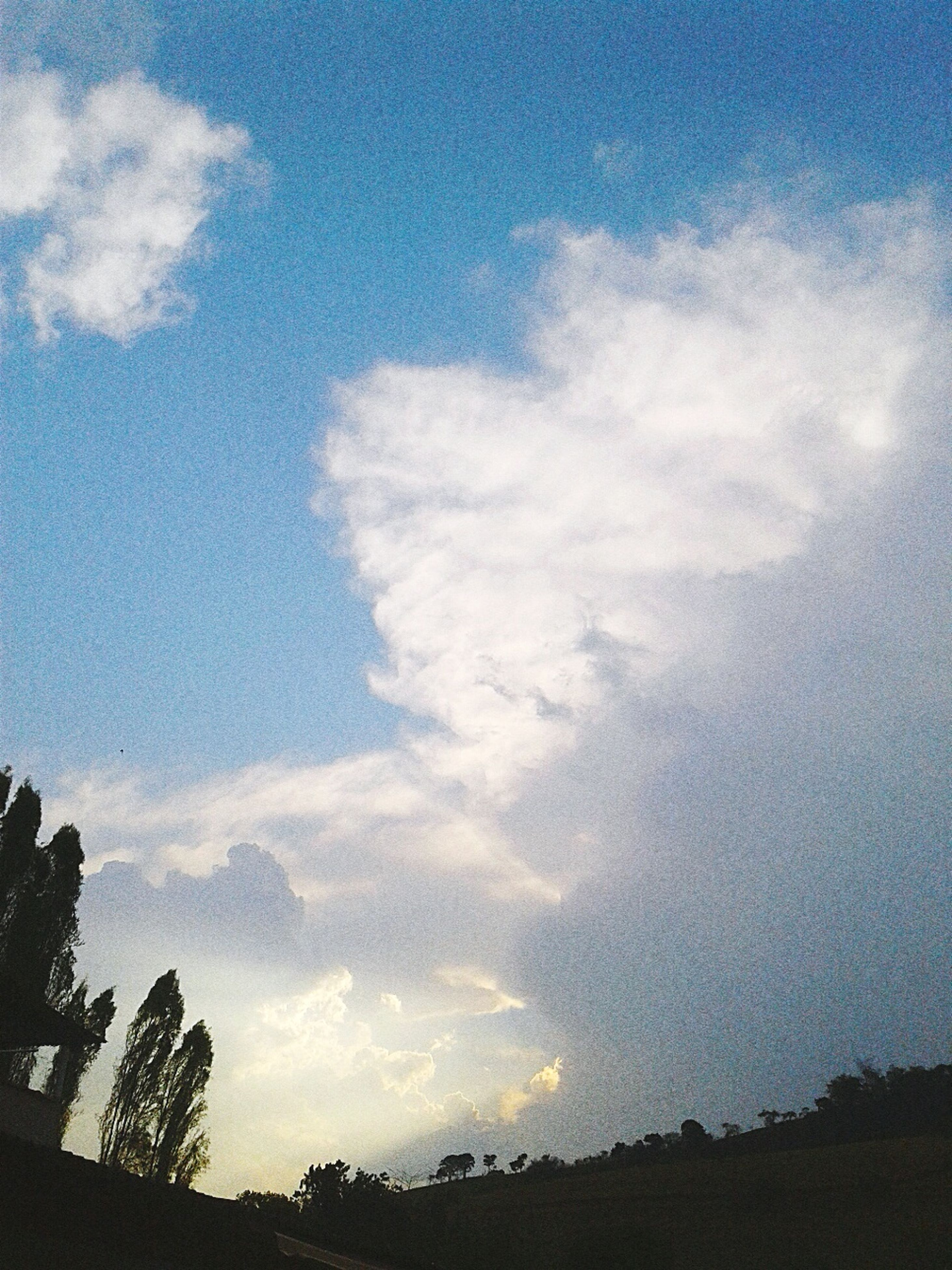 sky, tree, tranquil scene, tranquility, scenics, beauty in nature, cloud, cloud - sky, nature, blue, outdoors, day, growth, majestic, cloudscape, no people, cloudy, solitude, non-urban scene, cumulus cloud, outline
