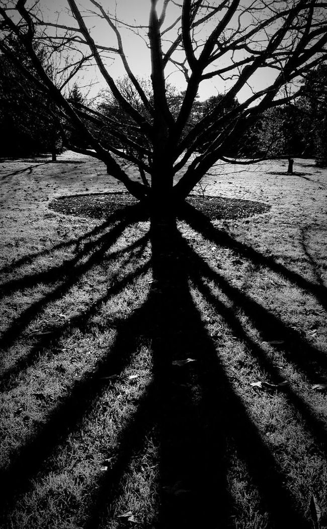 Black And White Shadowplay TheMinimals (less Edit Juxt Photography) Schattenspiel