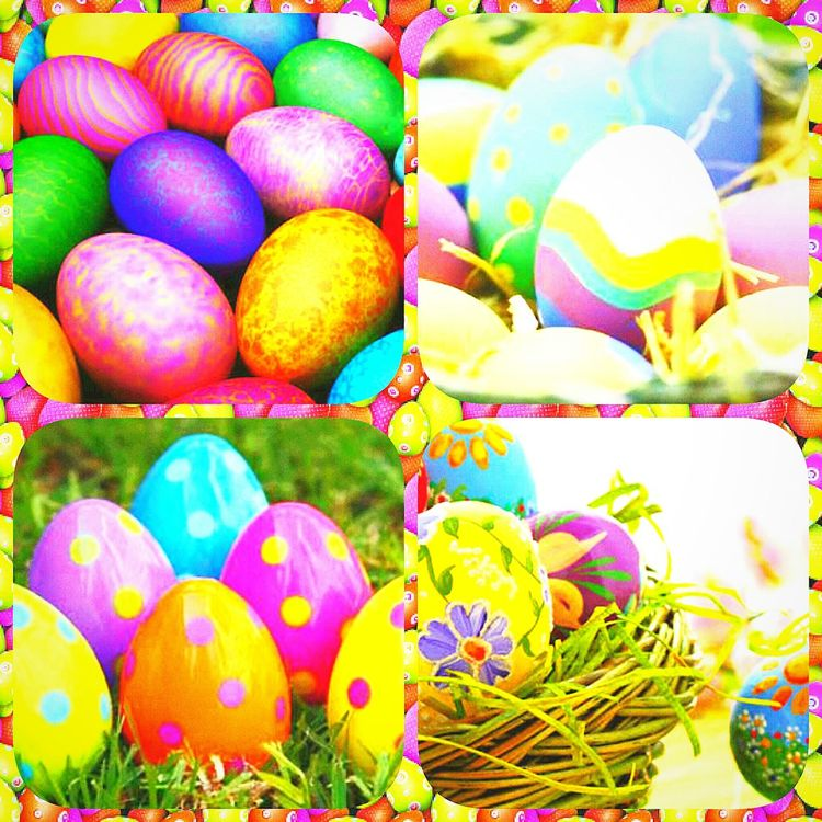 Colors Paskalya Egg Arts ⚪💫