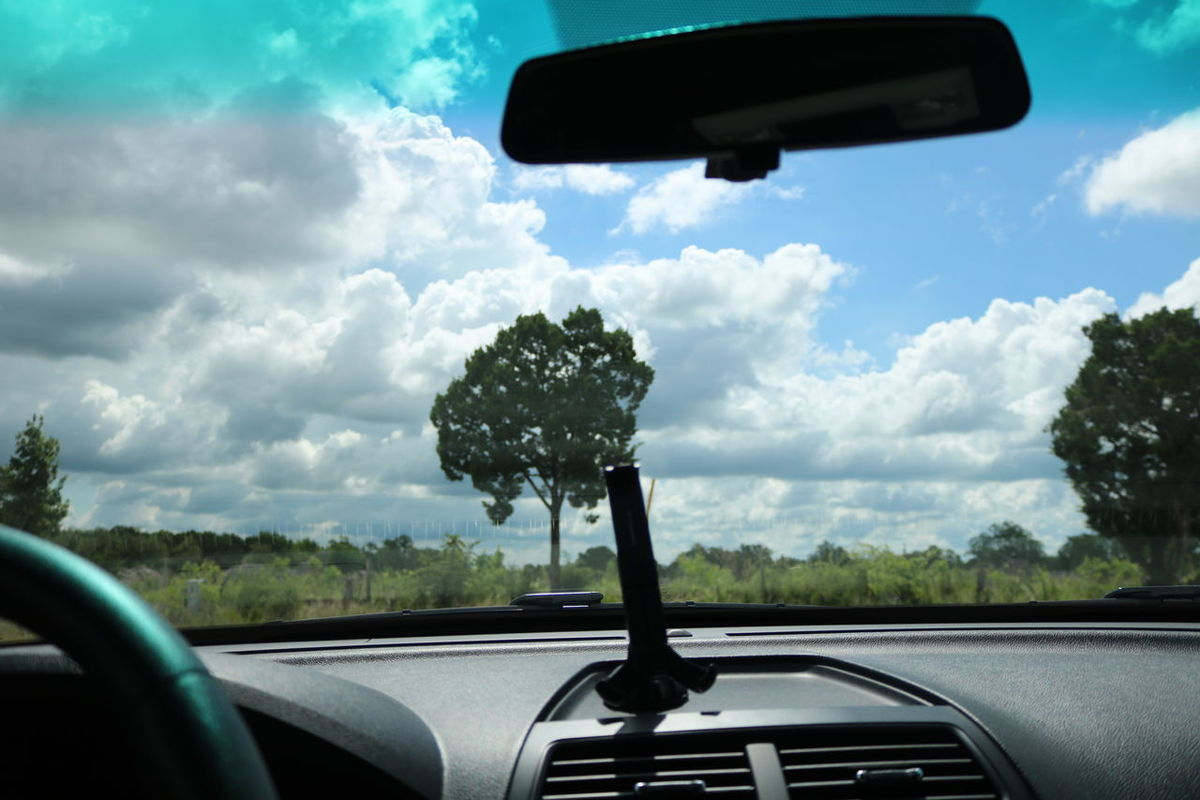 Canonphotography Car Point Of View Phone Holder Tree From Car Power In Nature No People Outdoors Live For The Story Day Sky Cloud - Sky Parking Lot Photography Parking Lot Photo Shoot  Car