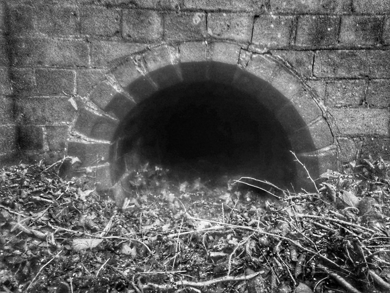 Canal Life Abstract Full Frame Backgrounds Textured  Tunnel Vision TunnelPorn Tunnel Series Drainage Channel Canals And Waterways Disused Canal DISUSED Ivy Covered Brickporn Brick Wall Arch Architecture_collection Abandoned Places Severn Way