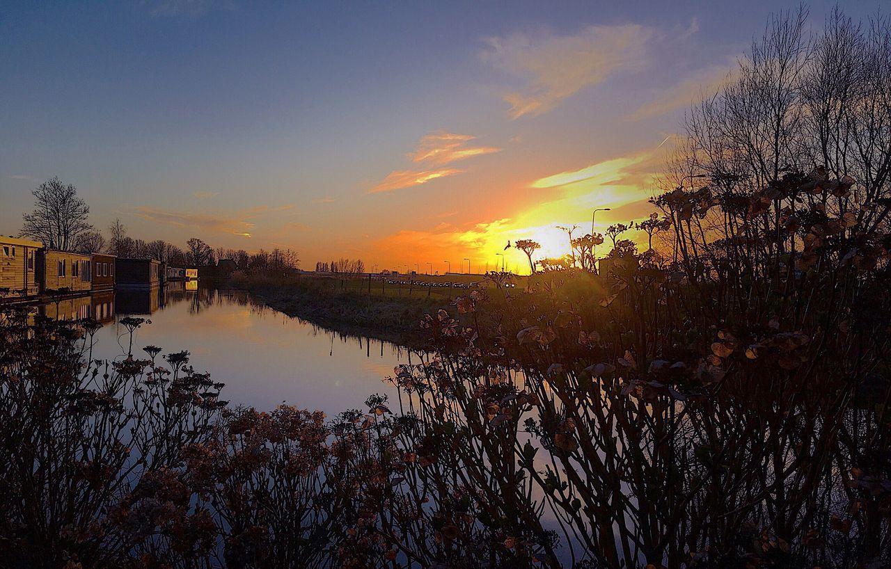 It's a beautiful day on my birthday 🎁🎉 Landscapes Landscape Nikontop Nikonphotographer NIKON D5300 Cloud EyeEmBestPics Sunset The Netherlands NikonLife Danivisions EyeEm Nikon Cloud - Sky Dawn Dawn Of A New Day Birthday