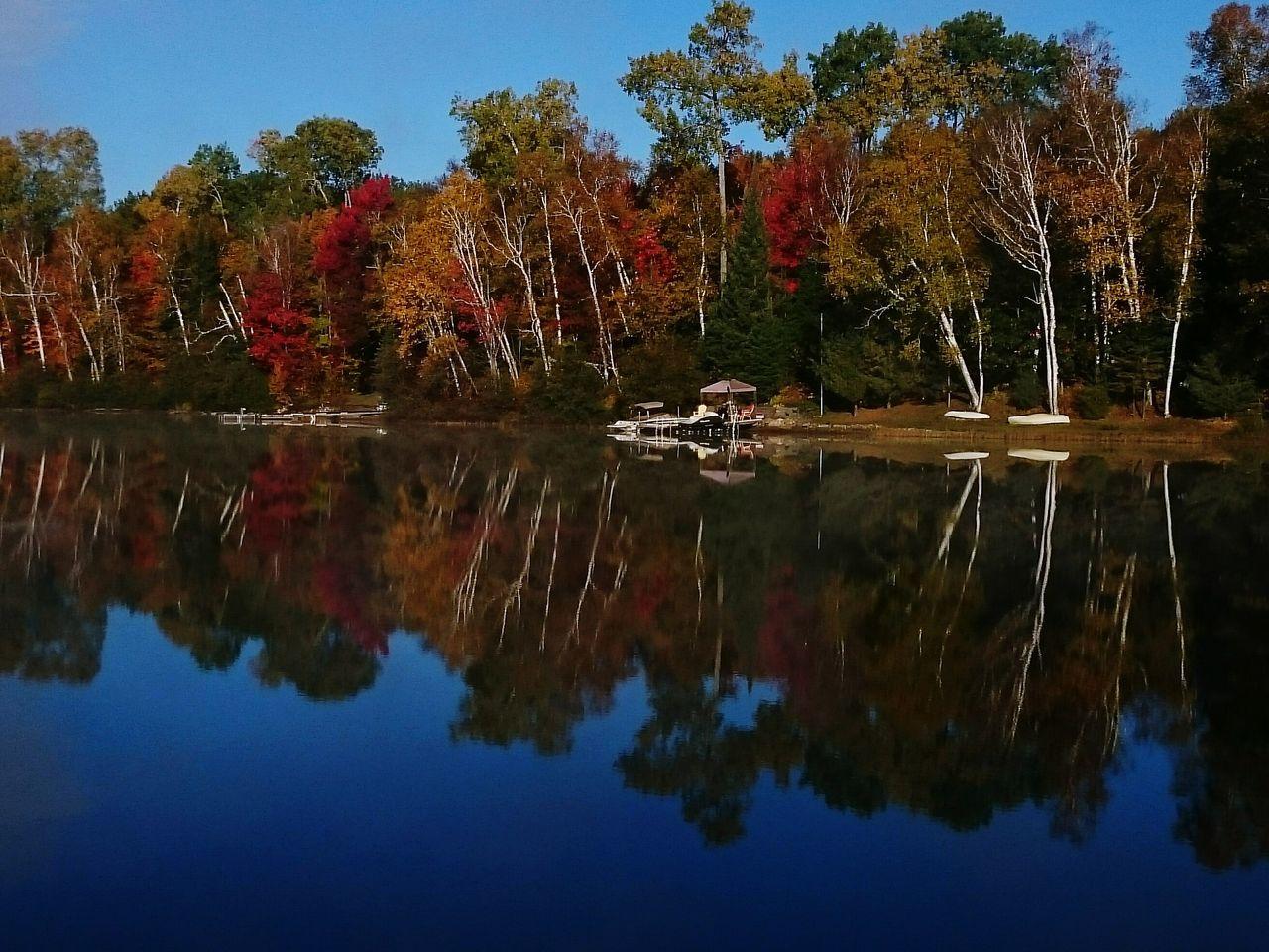 Perfect Match shoreline on my lake...