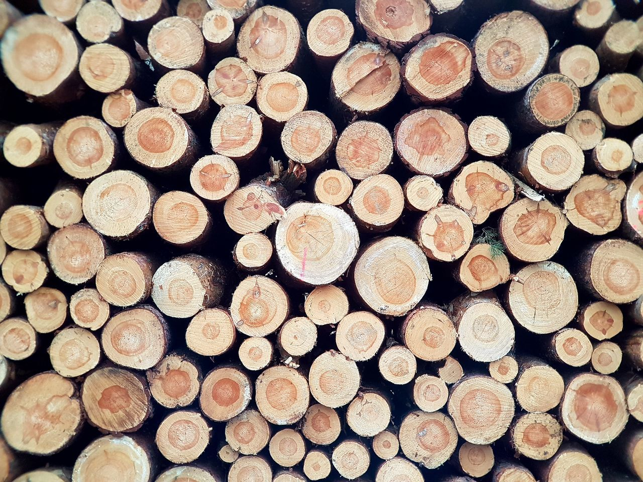 stack, log, abundance, circle, timber, large group of objects, no people, wealth, lumber industry, heap, woodpile, full frame, pile, backgrounds, forestry industry, close-up, day