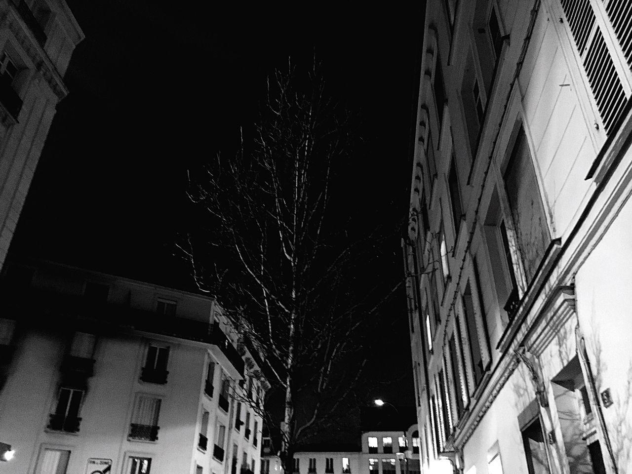 Paris At Night Tree Black And White Blackandwhitephotography Black And White Photography Black & White Blackandwhite Photography Bark At The Moon Sky Moon Blackandwhite Street Transylvanian Hunger