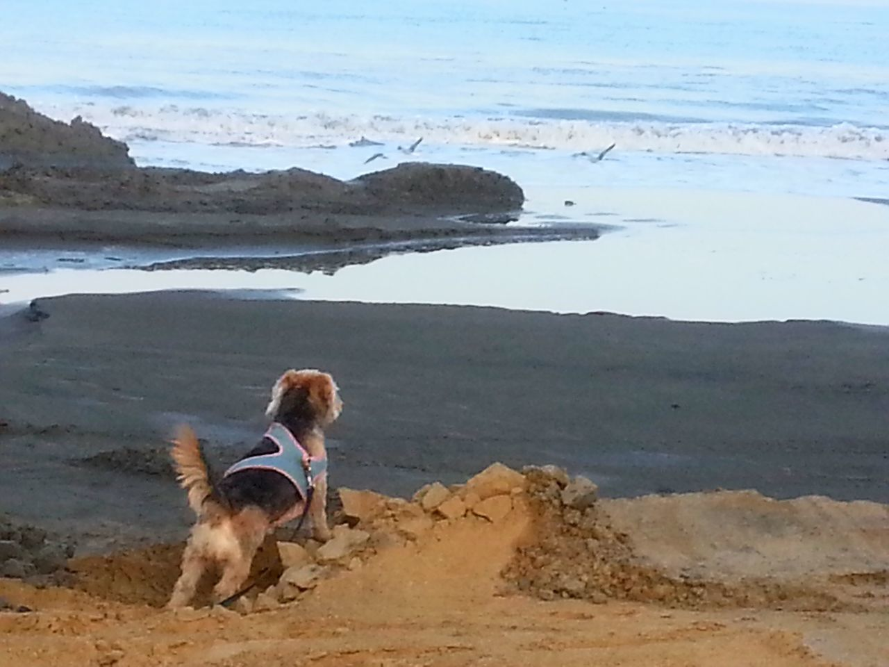 Enjoying Life Cartagena Se Transforma Anillo Vial De Crespo Capturing Movement Life Is A Beach Nina