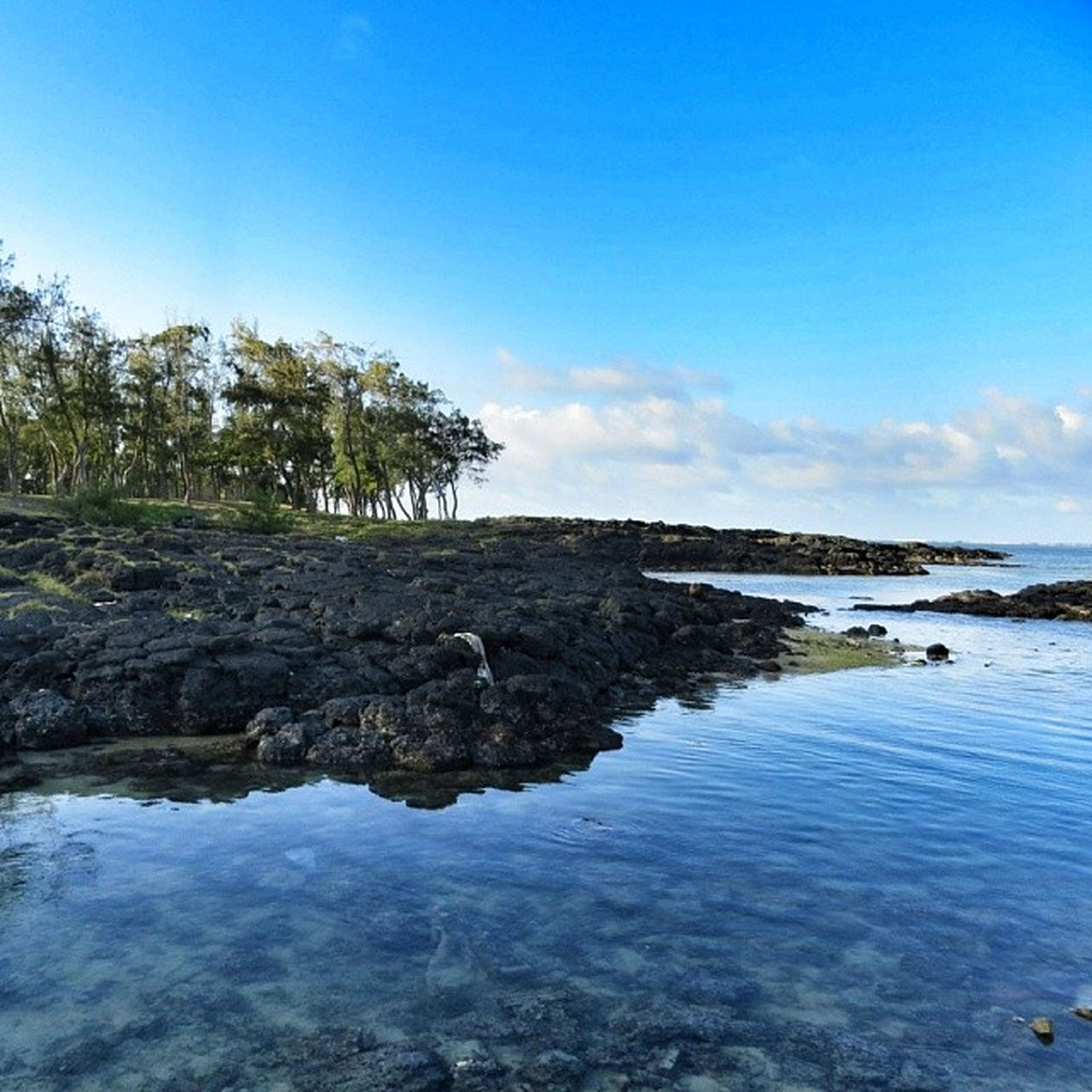 water, tranquil scene, tranquility, scenics, sea, beauty in nature, blue, rock - object, rock formation, nature, sky, tree, cliff, beach, idyllic, rock, horizon over water, clear sky, non-urban scene, shore