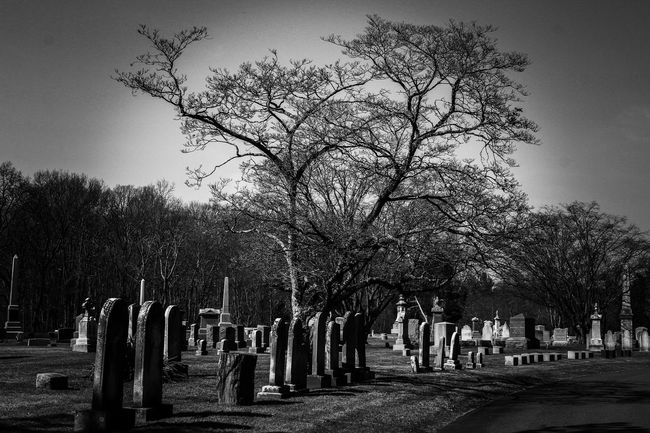 Things I Like Walking through cemeteries Death Life And Death Black And White Black And White Photography From My Point Of View Graveyard Beauty Cemetery Cemetery Photography Remembering Memories Family Black And White Cemetery Life After Death Memorial Silence Monochrome Photography At Peace Goodbye Grave Yard Not Forgotten Head Stones Cemetary Cemetary Beauty Cemetery Wanderings