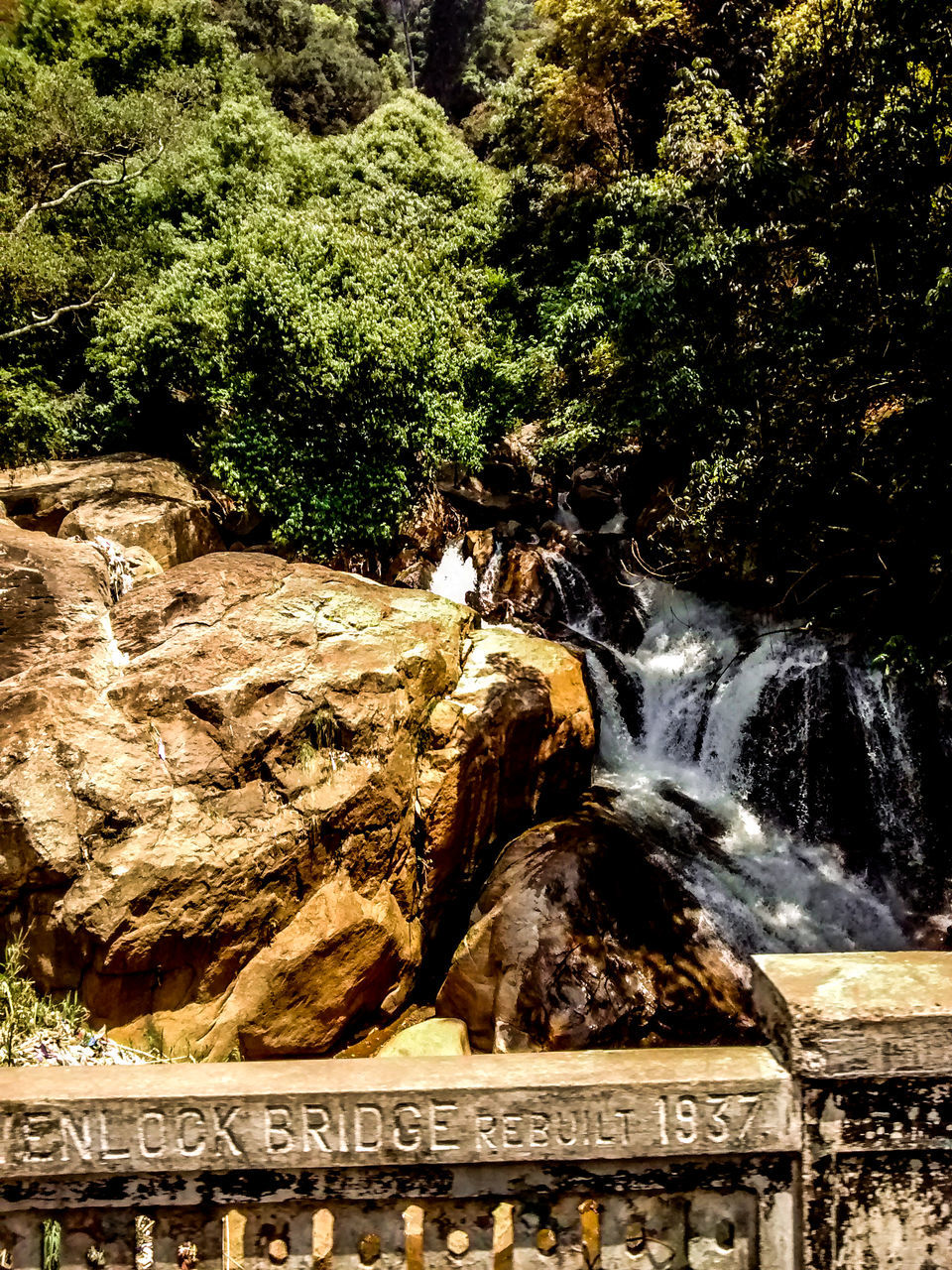 water, rock formation, rock - object, tree, text, nature, day, beauty in nature, no people, growth, scenics, outdoors, motion, cliff, waterfall, travel destinations