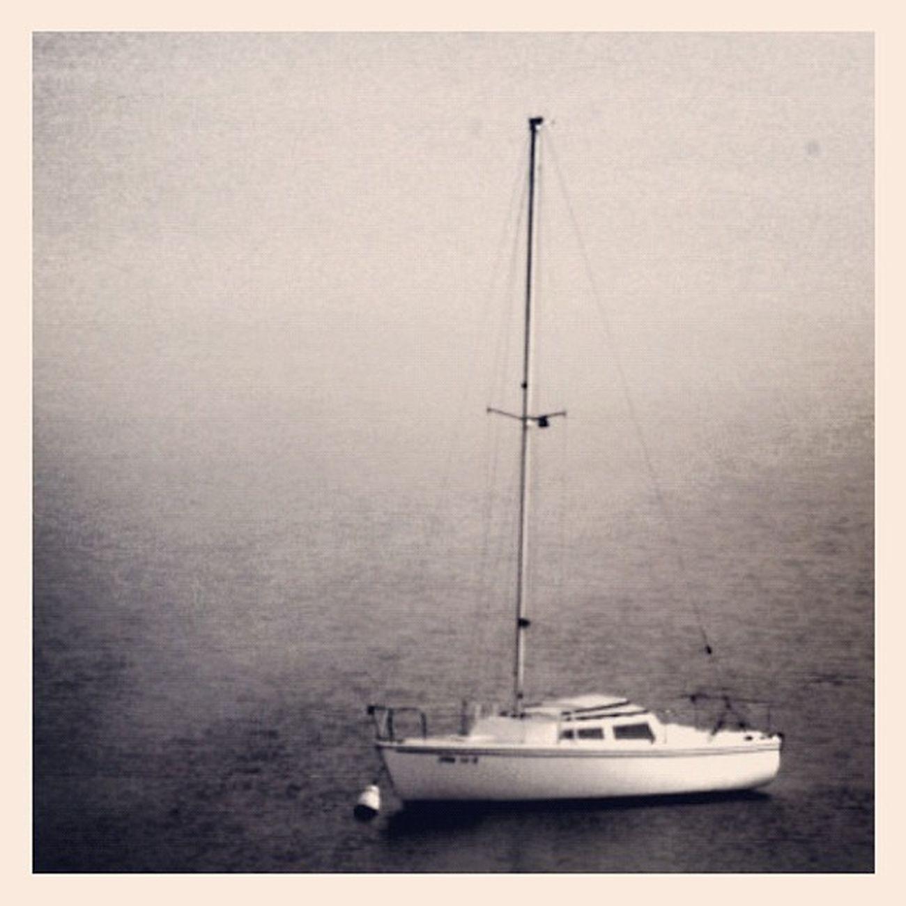 Sierra Lake (metaphorically speaking) #sail #sailboat #sierra #igersmichigan #up Sierra Gmy Photooftheday Instamillion Sailboat Jj_forum_0362 Sail Sweetsierra GCS Igers IGDaily Jj  Instagood Igscout Instaaaaah Instagramhub Jj_forum The_guild Primeshots Up Igersmichigan