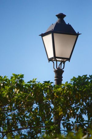 Lighting Equipment Low Angle View Sky Clear Sky Outdoors Street Light Street Lighting Street Lights Street Light Photography Street Light & Tree Street Light Poles Street Lights #2 Hedge Hedgerow Hedges Lighting Equipment Lighting Street Lamp Street Lamp Collection Street Lamp Post Street Light By Day