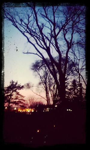 outside my window :) Taking Photos Hello World