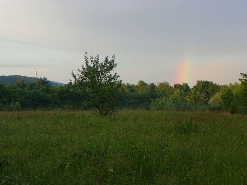 Tv tower vs. Rainbow Peaceful Landscape
