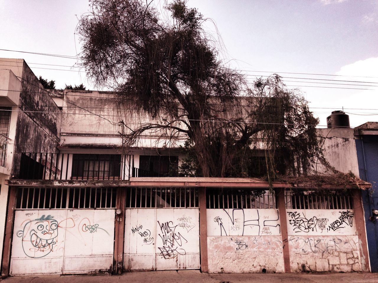 La casa del árbol Streetphotography IPhoneography Urban@ndante