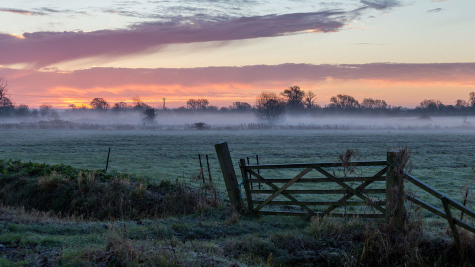 A thin veil of fog clings to the flood plains in rural Somerset as the sun rises illuminating the sky in pinks and blues Agriculture Blue Farming Fence Flood Plain Fog Frost Gate Glastonbury Grass Landscape Mist Nature No People Outdoors Pink Sky Somerset Somerset Levels Uk Sunrise Tranquility