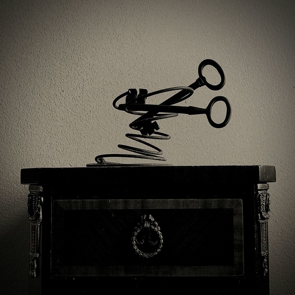Keys Keys Photography Elegant Surreal Surrealism Abstract Abstract Photography Found Object Bizzare Unusual No People Indoors  Shelf Day Dadaism Dadaist Dada Surrealism Photography DreamScapes Sepia Sepia Toned
